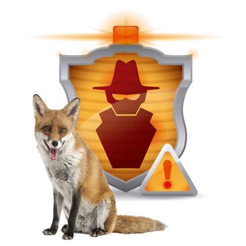 Double Fox Websites multi-tiered security