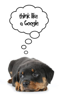 Puppy dog thinking about Google